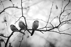 Friends by Modernmyth6277
