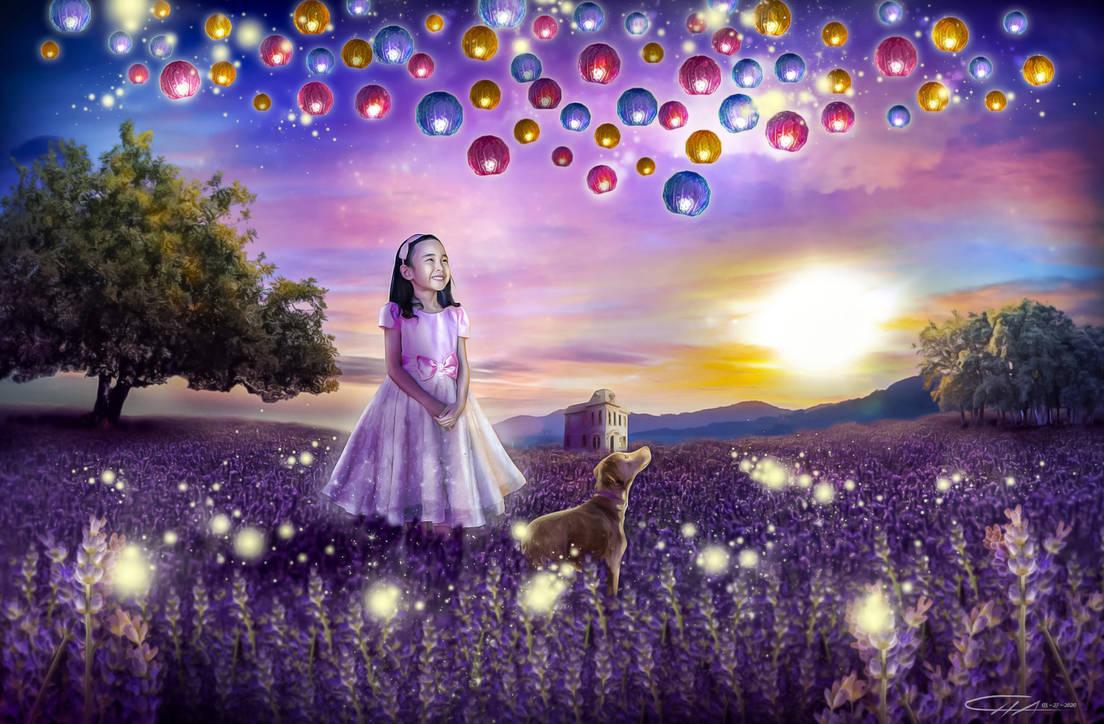 Wandering Imagination 1
