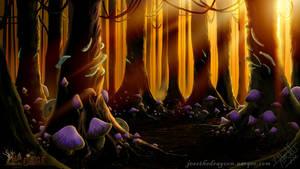 Enchanted Woods Sunset