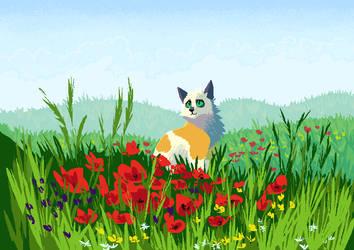 summer fields by IncuriousCat