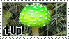 Real Life 1-Up Mushroom by ImFeelingStampity
