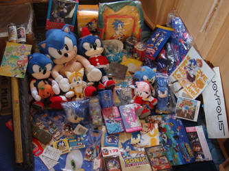 When a big Sonic Fan came home from Japan.... by Sega-Club-Tikal