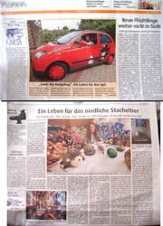 Die Lokalzeitung war bei mir zu Besuch ... by Sega-Club-Tikal