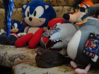 This plushie has no label... by Sega-Club-Tikal