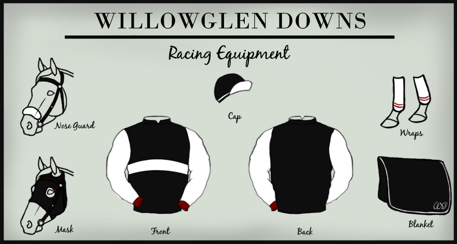jockey silks template - willowglen downs racing silks by ehetere on deviantart