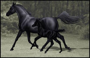 Fields of Grey by Ehetere