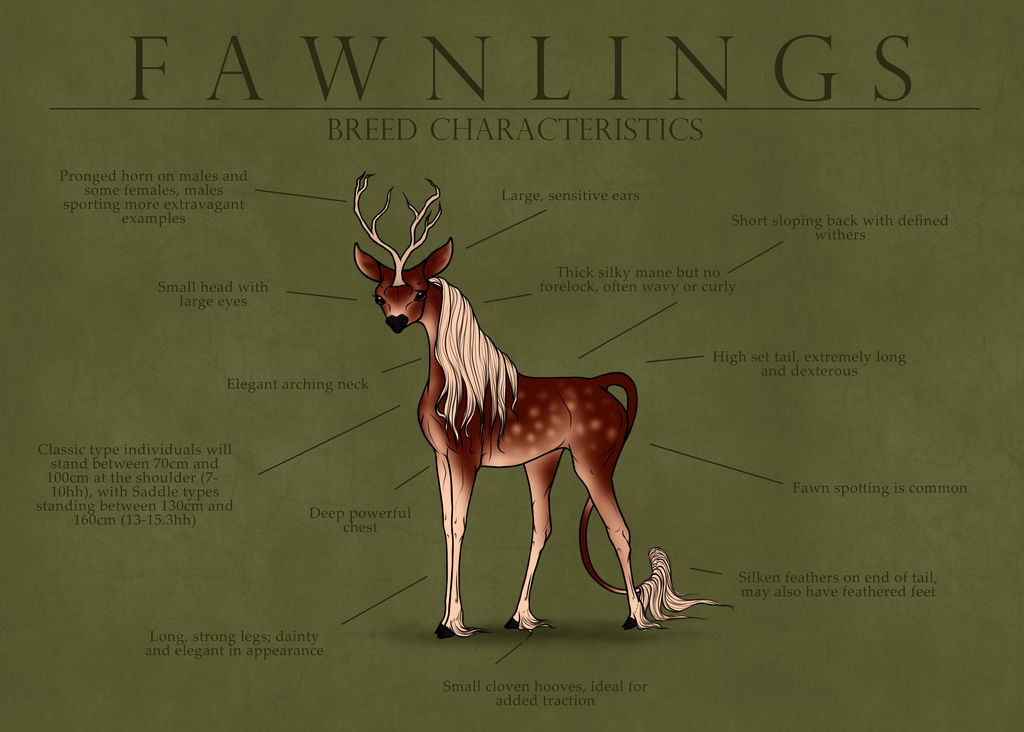 Fawnling Characteristics by Ehetere on DeviantArt