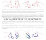 (De)Constructing the Arabian Head