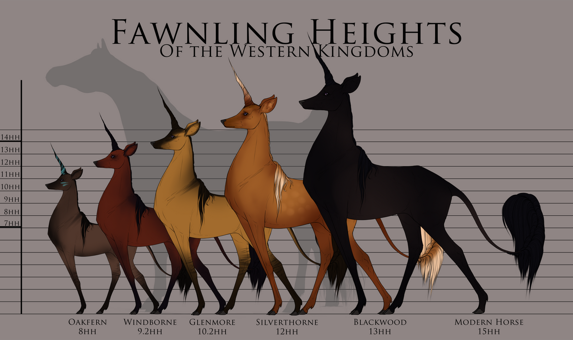 horse height chart: Fawnling height chart by ehetere on deviantart