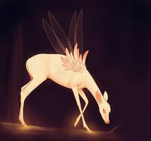 Fairy Light by Ehetere