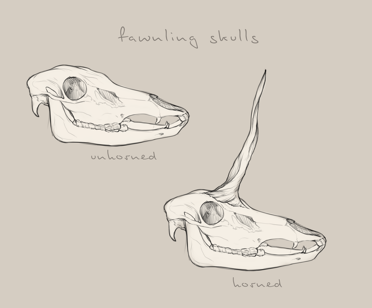 Fawnling Skull Reference by Ehetere