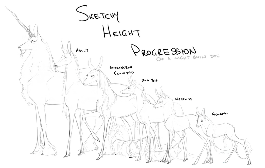 Fawnlings Height Progression by Ehetere