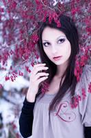 Violet Winter Glaze