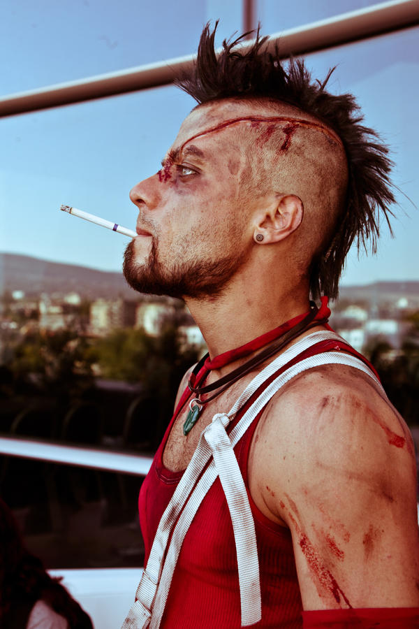 http://img03.deviantart.net/1fee/i/2013/257/4/c/vaas_by_grebeny-d6m8any.jpg