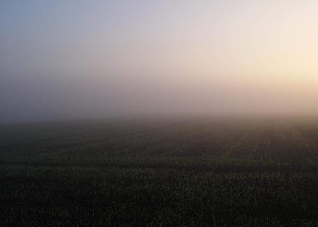 Haze by Kamil10741