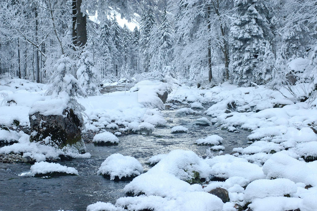 Winter11 by studio496