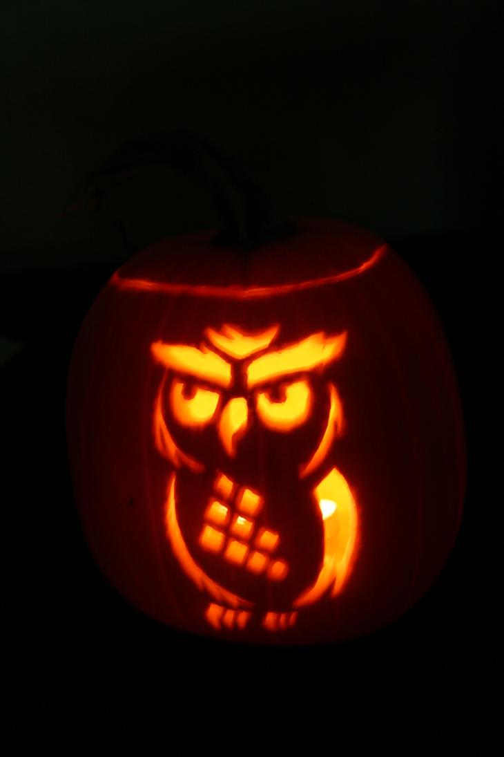 Owl pumpkin by manicmelvin on deviantart