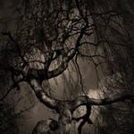 the tree by freakeesh