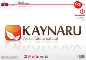 Kaynaru - Logo