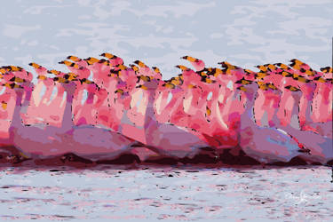 Flamingo Flock In Bay STAMPED