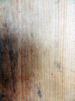 Burnt wood by BrunaVosto
