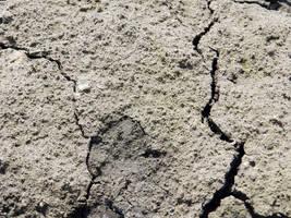 Ground texture by BrunaVosto