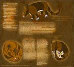 Flying Armadillos Species Shee