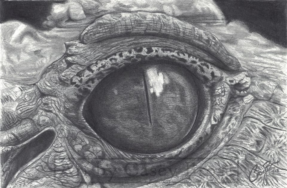 Crocodile Eye by BlueCea