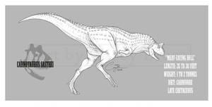 Carnotaurus sastrei by BlueCea