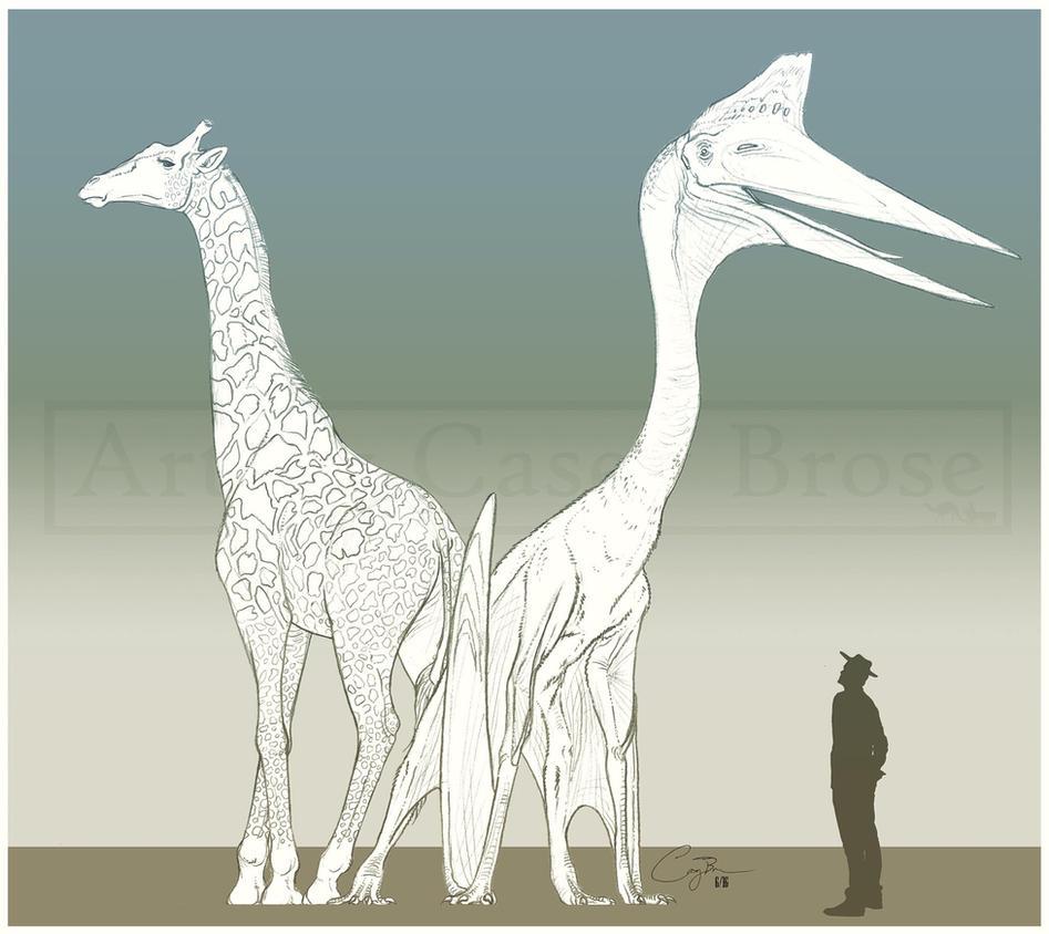 Amazoncom dinosaur wallpaper