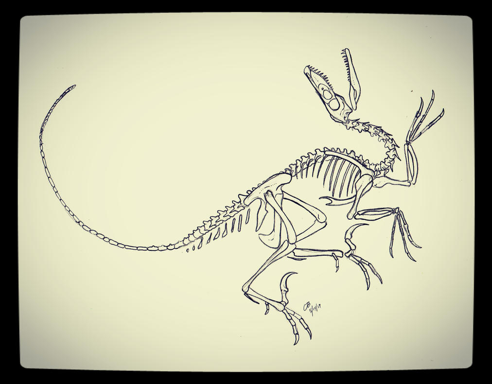dino art velociraptor tattoo design by me dinosaurs. Black Bedroom Furniture Sets. Home Design Ideas