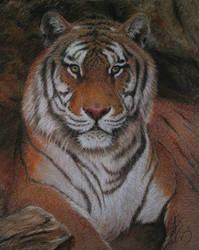 Tiger in Pastel by Asiri57