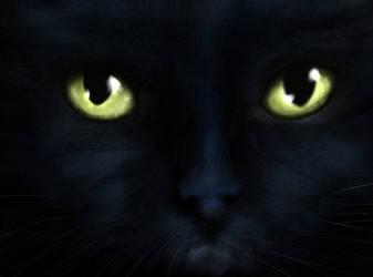 Night Eyes by Cryonisia