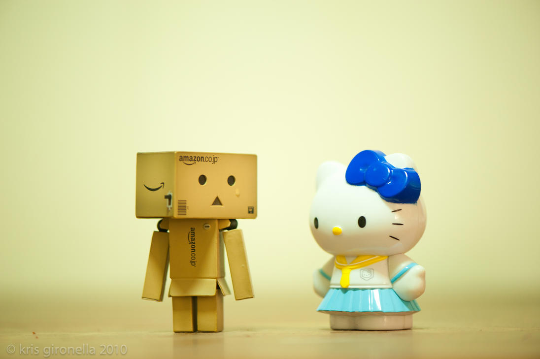 Kitty  Why Are You Crying Danbo