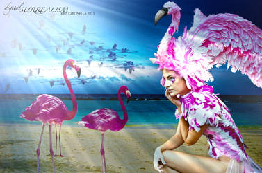Flight of the Flamingo