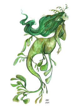 Leafy Sea Dragon Mermaid