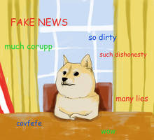Doge, White House, Small Paws