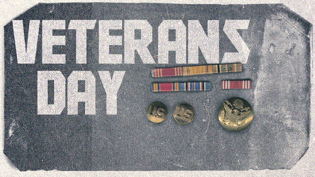 Veterans Day Honor Illustratio