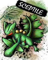 Sceptile by sudro