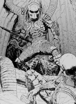 Stalker Predator box illustration