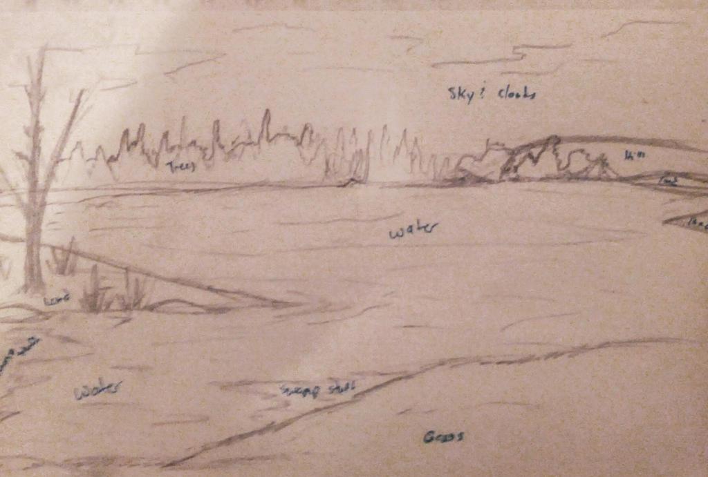background sketch by DappledSun