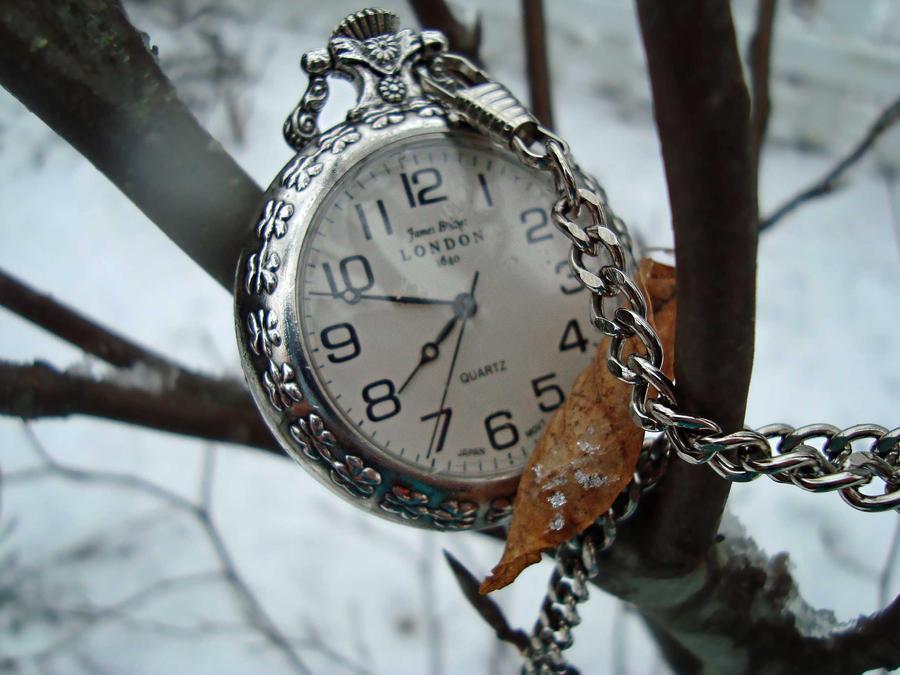 Winter is Here by xXlea68Xx