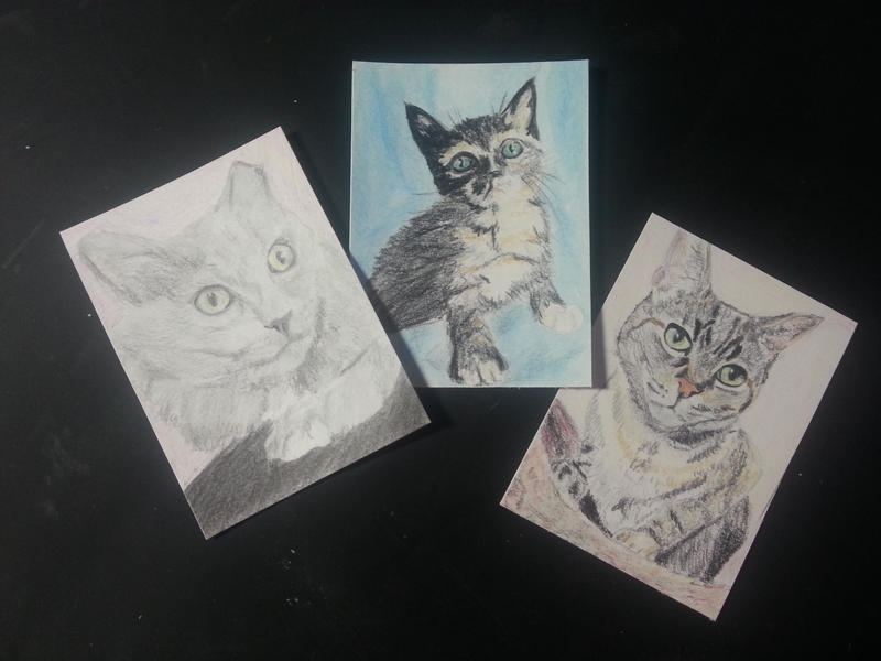 Kitty Collection ACEO by BillieJeanDavy