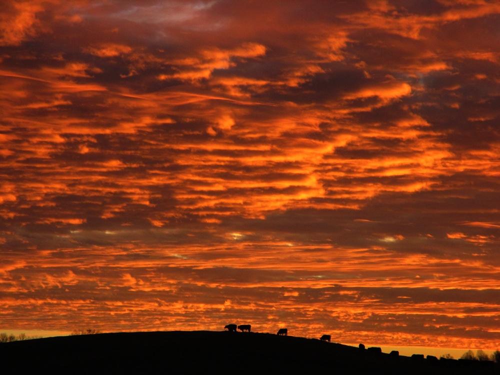 sky fire by sunbeamfireking
