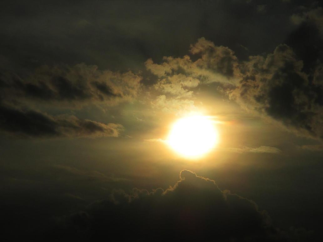 yellow sun by sunbeamfireking
