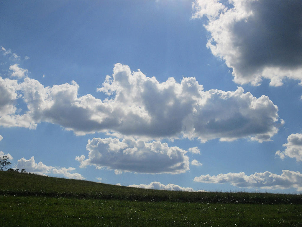 field and sky by sunbeamfireking