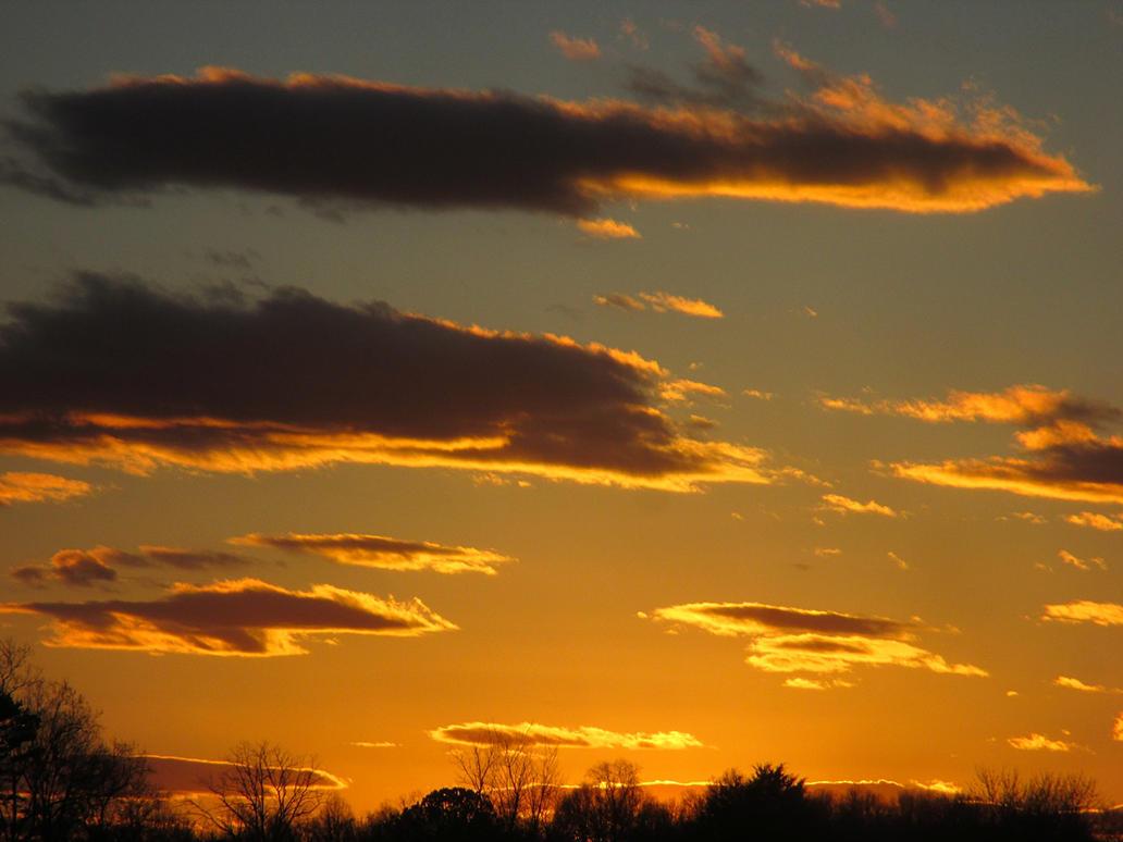 yellow sunet by sunbeamfireking