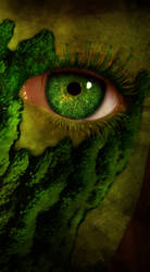Moss eyed... by lilminx16
