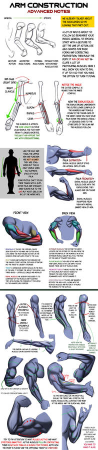 Arm Construction Notes.