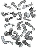 Arm Ecorche and Volume Studies